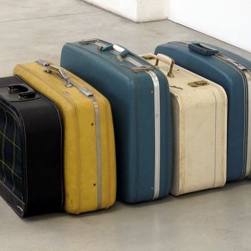 Black, yellow, blue, and white suitcases lined up together on a gray gallery floor